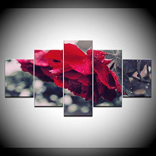DGGDVP rode bloemen grijze achtergrond 5 stuks HD behang kunst canvasdruk moderne posters modulaire kunst schilderij voor woonkamer wooncultuur 30x40cmx2,30x60cmx2,30x80cmx1 Geen frame.