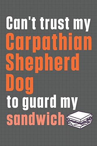 Can't trust my Carpathian Shepherd Dog to guard my sandwich: For Carpathian Shepherd Dog Breed Fans