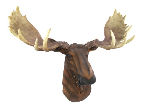 DWK 'Emperor' Wall Mounted Moose Head | Wall Art for your Home | Animal Rustic Home Décor | Moose Decorations | Taxidermy Wall Mount | Hunting Décor - 23.5L'…