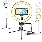 LOMTAP LEDリングライト照明キット外径9インチ 3色無段階調光モード USB卓上スタンド 両用スタンド 高輝度照明スマートフォンスタンド付き調光可能YouTube生放送/ビデオカメラ撮影用/美容化粧/カメラ撮影