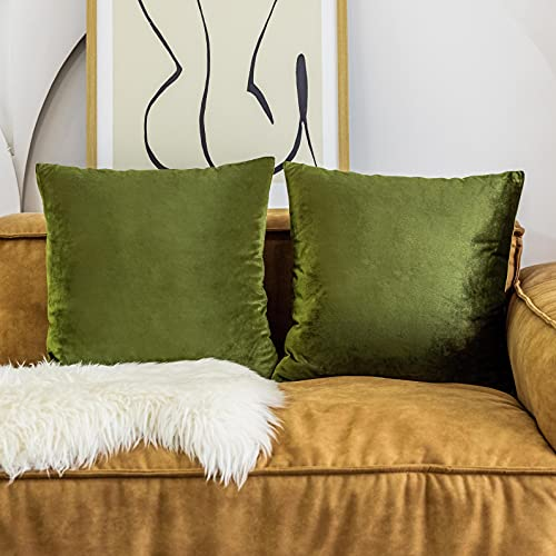 Home Brilliant Set of 2 Velvet Accent Throw Pillow Covers Cushion Cover Decorative Pillowcases for Nursery Summer, 45cm x 45cm(18 x 18 inches), Avocado Green