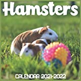 Hamsters Calendar 2021-2022: April 2021 Through December 2022 Square Photo Book Monthly Planner Hamsters, small calendar
