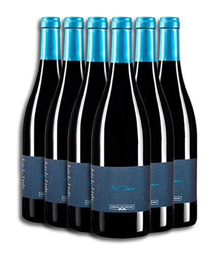 Leyenda del Páramo - El Músico Vino Tinto - Caja de 6 botellas de 75 cl. (12 meses)