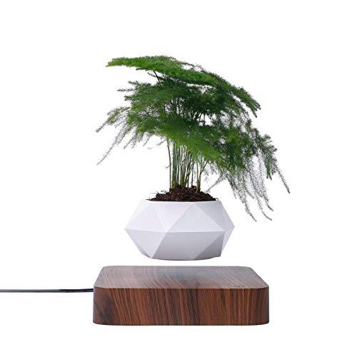 Levitating Air Bonsai Pot, Levitating Plant Magnetic Levitation Flower Pot Planter 360° Rotation Suspension Flower Floating Pot Air Bonsai Pot for Home Company Office Decor