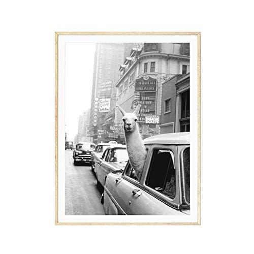 Ingrirt5Dulles Vintage Alpaka Poster Leinwand Malerei Wandkunst Bild Wohnzimmer Wohnkultur/geeignet für Schlafzimmer/Wohnzimmer/Hotel/Restaurant 50 * 70cm