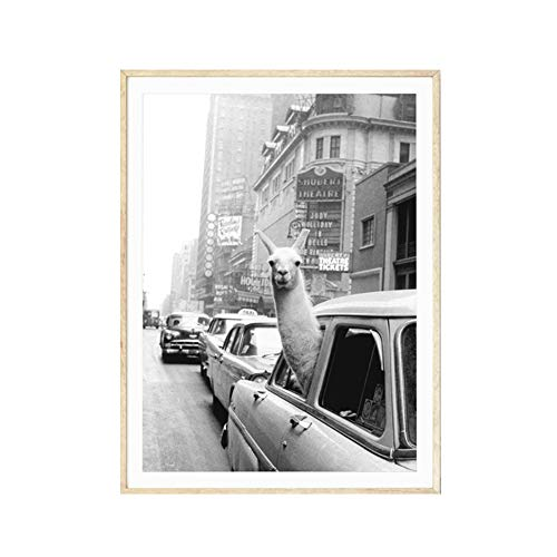 bdrsjdsb -   Vintage Alpaka