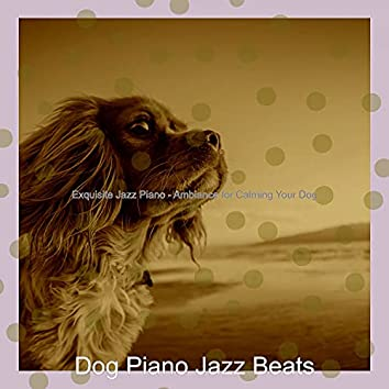 Exquisite Jazz Piano - Ambiance for Calming Your Dog