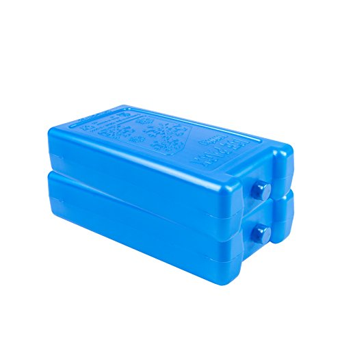 White Hinge 2 x Large 1000 ml congélateur Block – Utilisation avec sac isotherme pour garder la nourriture fraîche