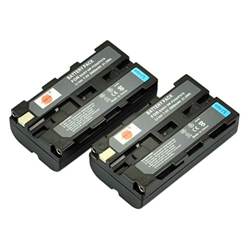 DSTE 2-Pacco Ricambio Batteria per Sony NP-F550 NP-F330 NP-F530 NP-F570 CCD-SC5 CCD-SC55 CCD-SC65 DCR-SC100 CCD-TRV110K DCR-TRV120 DCR-TRV130 DCR-TRV210 DCR-TRV220K DCR-TRV310K DCR-TRV510 DCR-TRV520 DCR-TRV525 DCR-TRV620K DCR-VX2000 DCR-VX2100 DCR-VX2100 DCR-VX2100E DCR-VX700 MVC-FD100 MVC-FD200 MVC-FD5 MVC-FD51 MVC-FD7 MVC-FD88 MVC-FD90