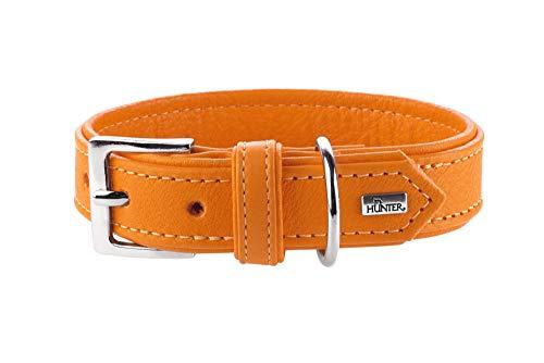 HUNTER WALLGAU Hundehalsband, Leder, weich, geschmeidig, hoher Tragekomfort, 45 (S), orange