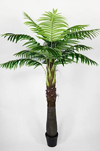 Seidenblumen Roß Kokospalme/Kokosnusspalme 230cm bis 260cm ZJ künstliche Palmen Kunstpalmen Kunstpflanzen Dekopalme