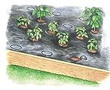 Easy-Plant Weed Block Mulch
