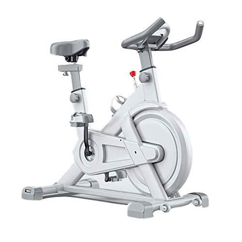 MGIZLJJ Cyclette stazionario Indoor Cycling Bike for Professionista Cardio Workout, Coperta casa Cardio Exercise Training