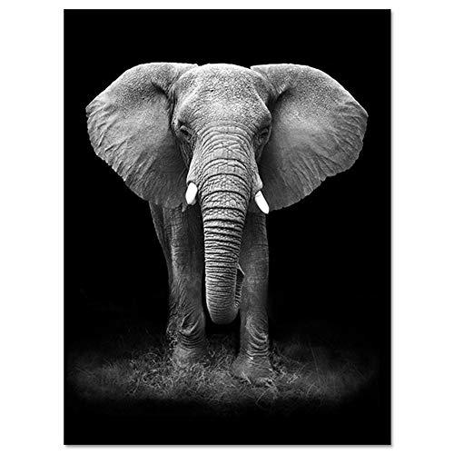 Bilder Auf Leinwand,Schwarze Und Weiße Tier Elefant, Fashion Dekor Leinwand Gemälde Kunstdruck Poster Bild Wand Schlafzimmer Wohnzimmer Dekoration Malerei Wandbild