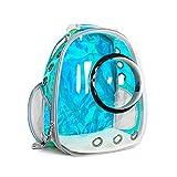 zdz Paquete del Portador de la cápsula Espacial, la Bolsa de Mascotas de Gran Capacidad Limpia Transparente, para Aquellos Que Tienen Mascotas, Necesitan Salir con Mascotas (Color : Blue)