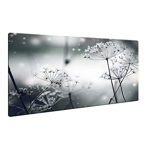CTC-Trade | Herdabdeckplatten 80x52cm Ceranfeld Abdeckung Glas Spritzschutz Abdeckplatte Glasplatte Herd Ceranfeldabdeckung Blumen Schwarz Grau