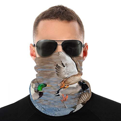 Puilkfgt Beauty Mallard Ducks Hunting Headbands for Men and Women for Running,Yoga and Bike Helmet Friendly