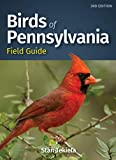 Birds of Pennsylvania Field Guide (Bird Identification Guides)