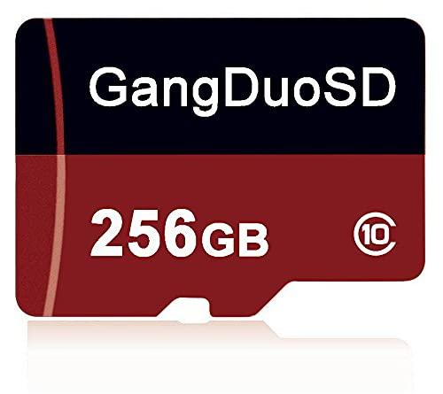 Tarjeta de memoria Micro SD de 256 GB, clase 10, tarjeta Micro TF C10, con adaptador SD gratuito para smartphones, altavoces, tabletas, drones, etc. (256 GB)
