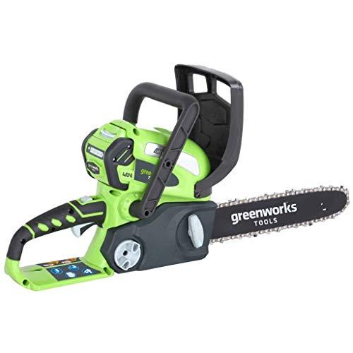Greenworks Tools 20117 40V accu-kettingzaag 30cm Gereedschap + 1 accu 2 Ah + oplader. groen