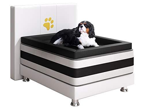 Inter Handels Doggy Boxspringbett, 100% Polyester, Weiss, 180x200 cm
