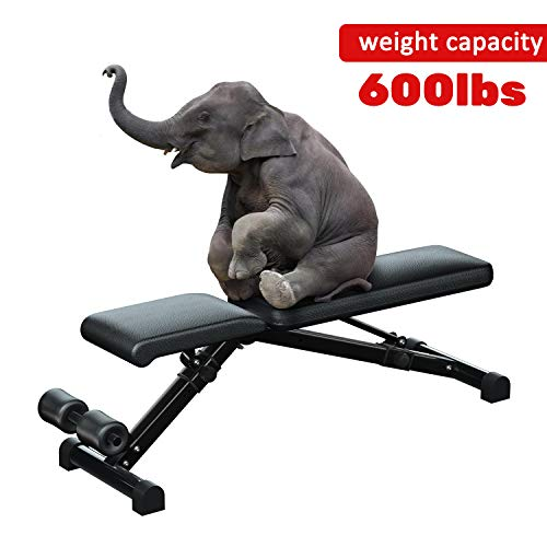 Urchin Adjustable Strength Training Bench for Full Body Multi-Functional Workout Exercise Dumbbell Bench Press Work Out GYM Weight Entryway Bench (Large)