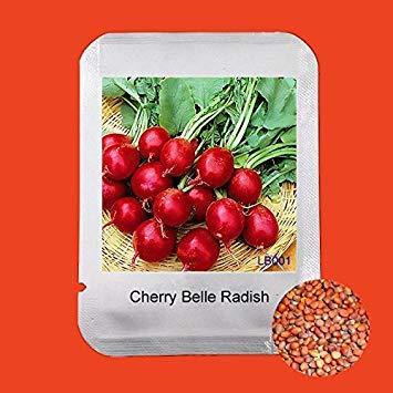 ASTONISH SEEDS: Kiwano exóticas Semillas 5pcs / bolsa metuliferus cuernos Fruit Vegetable Seeds Inicio planta de jardín