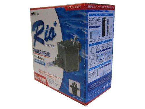 カミハタ Rio+600 (50Hz)