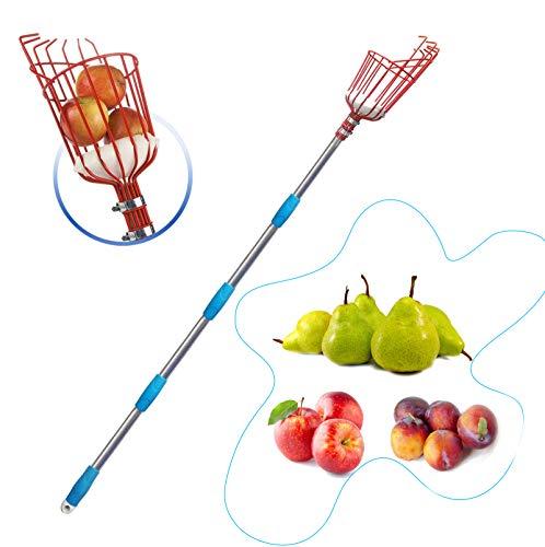 HOSKO 8FT Fruit Picker Tool, Lightweight High-Grade Stainless Steel Adjustable Fruit Picker...