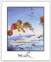 ポスター サルバドール ダリ Reve Cause par la Vol d'une Abeille 額装品 アルミ製ハイグレードフレーム(ホワイト)