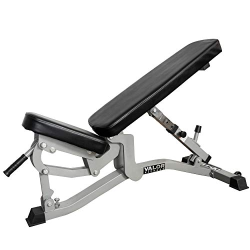 Valor Fitness DD-11 Adjustable Weight Bench for Flat/Incline Bench Press with Wheels, Black Arizona