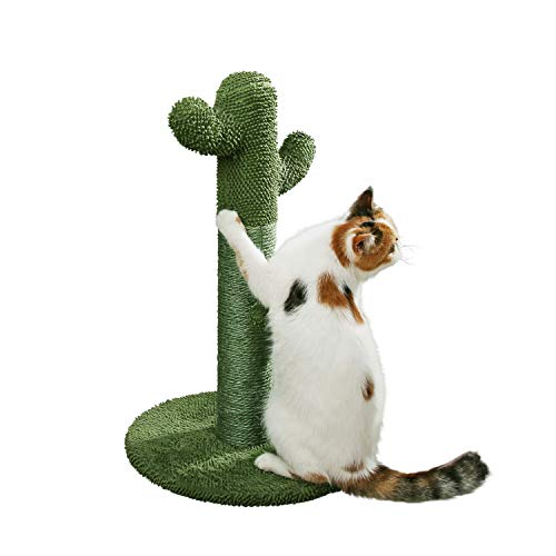 PetnPurr The Original Cactus Cat Scratching Post with Teaser Ball for All Ages