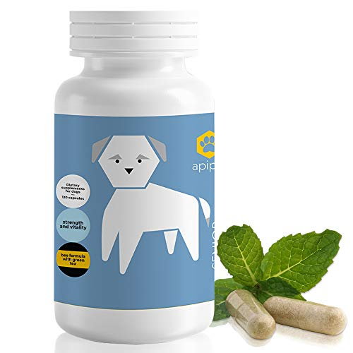 ApiPet Senior Pet Dietary Supplement - Natural Formula for Older Dogs - Green Tea, Bee Pollen, Ginger, Propolis - May Help Support Immune & Digestive Function - Anti-Aging & Calming - 120 capsules