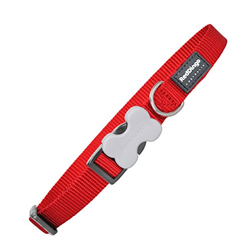 Red Dingo GmbH 9330725006041 Collar Perro, S, Rojo