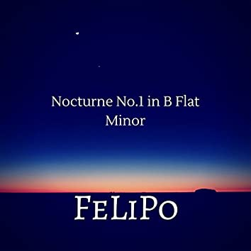Nocturnes, Op. 9: I. Larghetto in B-Flat Minor