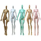 CHENGYIDA 5 pcs/lot Multi-Joint Rotatable Nude Doll Body Toy Movable Flexible accessorries for high Doll