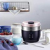 LMDJ Máquina Griega automática Inteligente del Yogur, pequeña máquina fermentada Multifuncional casera del Queso del Vino del arroz 1L