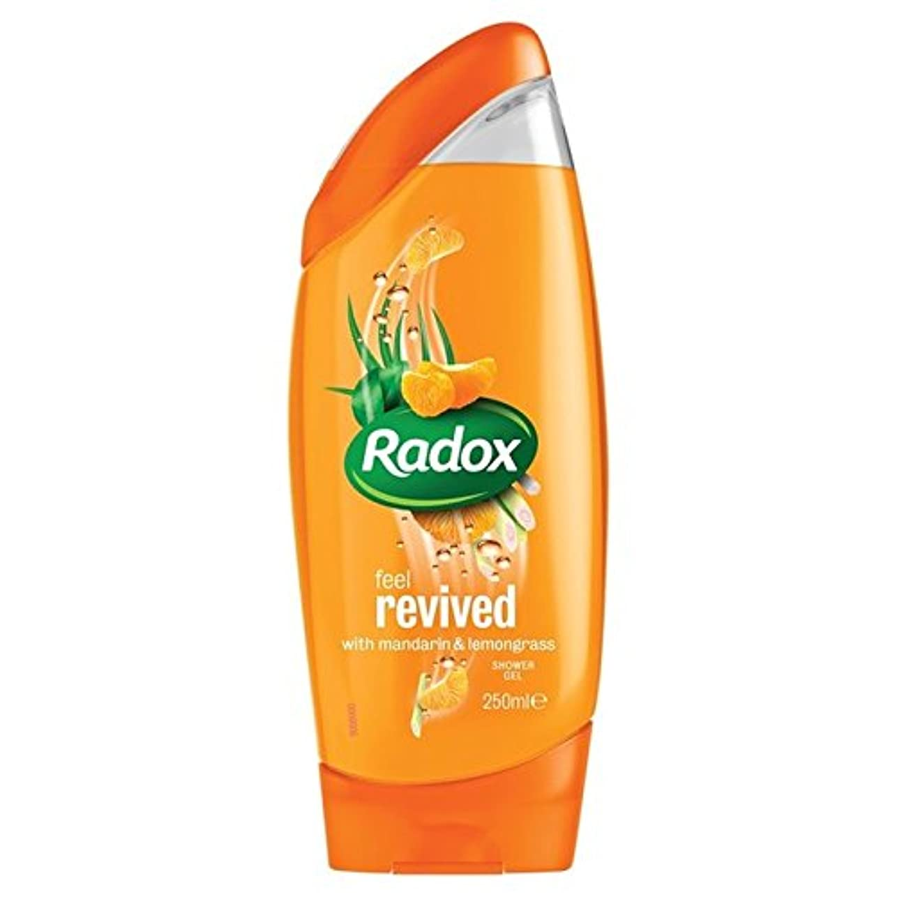 正しい組み合わせる倒錯のみかんは、シャワージェル250ミリリットルを復活させます x2 - Radox Mandarin Revive Shower Gel 250ml (Pack of 2) [並行輸入品]