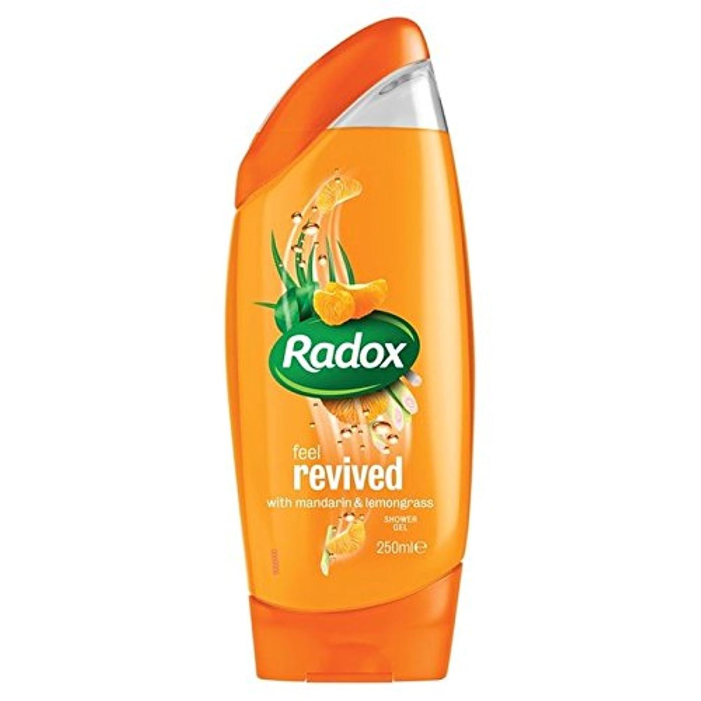 結紮プット船上のみかんは、シャワージェル250ミリリットルを復活させます x4 - Radox Mandarin Revive Shower Gel 250ml (Pack of 4) [並行輸入品]
