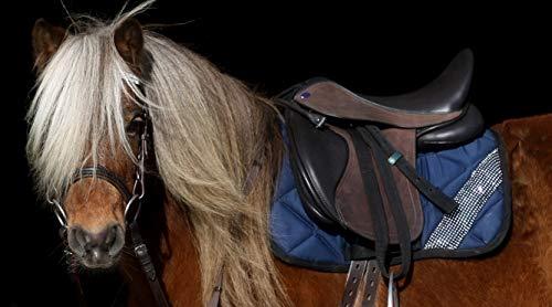 Tysons Breeches MAX Ledersattel + 5 Kopfeisen 14 15 Zoll Shetty Ponysattel Sattel Leder verstellbar (14 Zoll)