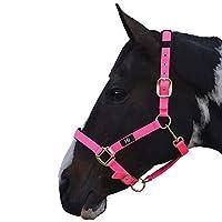 (ハイ) Hy 馬用 デラックス パッド入り ヘッドカラー 頭絡 馬具 乗馬 ホースライディング (ポニー) (ホットピンク)