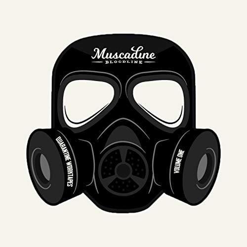 Quarantine Work-Tapes, Vol. 1