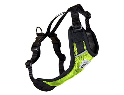RC Pet Products Canine Friendly Vest Dog Harness V.2, Car Restraint Harness, Small, Lime