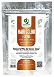 Hair Color For All Natural Hair Dye For Men & Women I 100% Natural & Chemical-Free Pure Hair & Beard Color, Ginger Natural Red