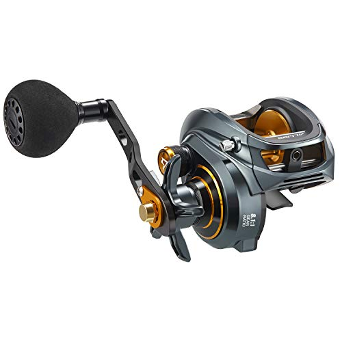 what is the best saltwater baitcasting reel 2020