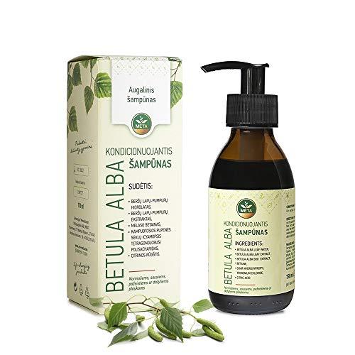Biologische shampoo van natuurlijke cosmetica met ecologische berkenbladeren en toppen - veganistisch, zonder parabenen, siliconen, sulfaten - haarshampoo voor volume, glans, vocht - natuurlijke haarverzorging tegen roos