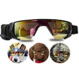 GLE2016 Dog Goggles Small Dog Sunglasses Waterproof Windproof UV Protection for Doggy Puppy Cat, Pet Sunglasses with Adjustable Strap for Travel, Skiing and Anti-Fog (Medium, Black+Yellow)