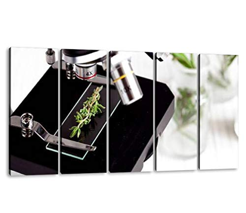 KiiAmy 5 Panels Art Wall Decor Test Herbs Samples on a Microscope Slide Close up Artwork Modern Canvas Prints Office Bedroom Home Decor Framed Painting Ready to Hang (60''Wx32''H)