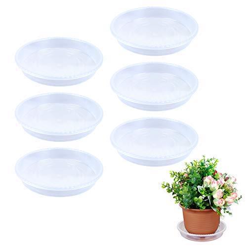 Outinhao, Blumentopf Untersetzer, 6 er STK, 15cm/25cm/30cm (6 inch), Transparent, für Drinnen und Draußen, PP (15CM)