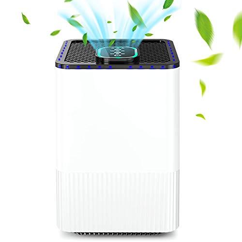 Luftreiniger Hepa Aktivkohlefilter,Luftreiniger mit HEPA-Filter & Ionisator,Mit 4-Lagen-Filtration und 3-Timer-Funktion,für Raucherzimmer,Wohnung, Schlafzimmer, Haus, Pollen, Pet Dander und Staub
